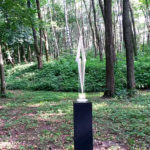 Wahrnehmung-Wald-1